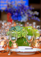 Suzanne Court Catering & Events